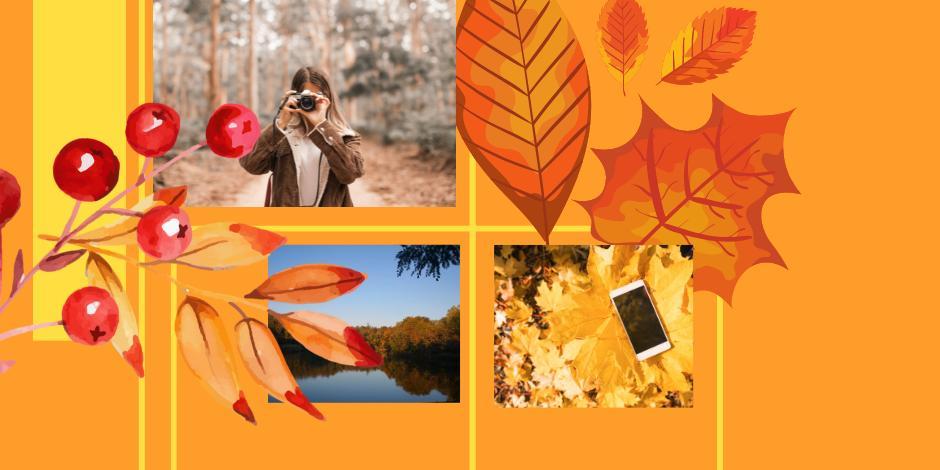 Pilisvörösvár őszi ruhában - fotópályázat